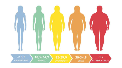 Move Over BMI, Do You Know Your Body Fat Percentage?