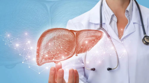 What Is Fatty Liver?